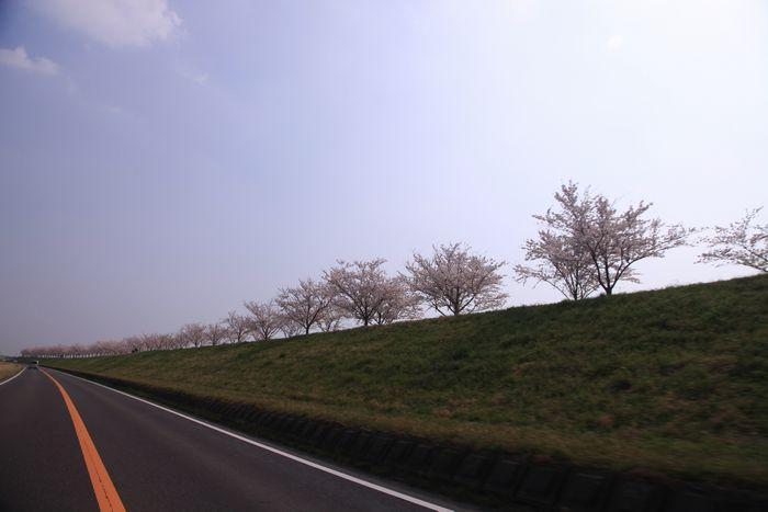 IMG_1184-0.jpg